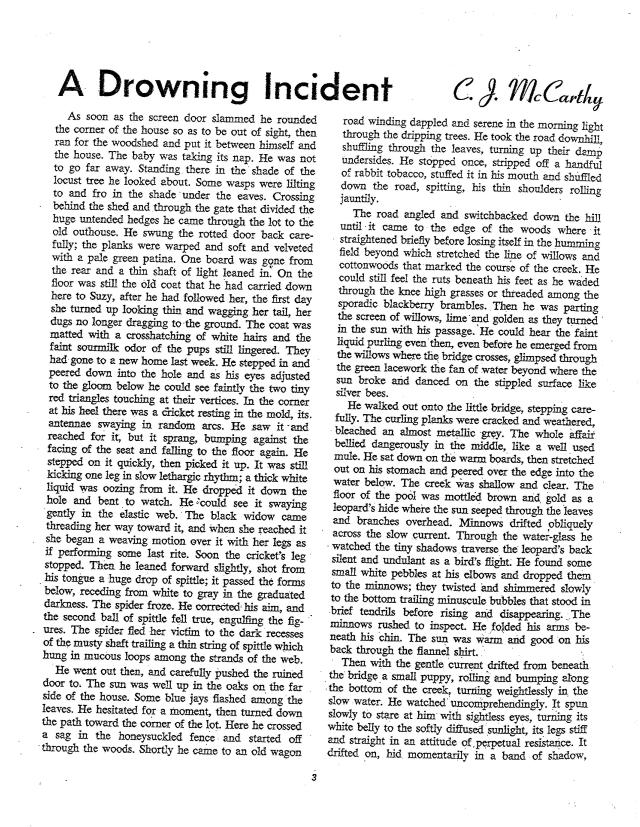McCarthy Drowning Incident-page-1