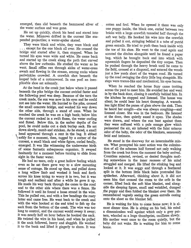 McCarthy Drowning Incident-page-2